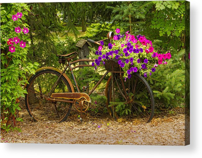 Garden Design Acrylic Print featuring the photograph The Bike Stops Here - Niagara by Marilyn Cornwell