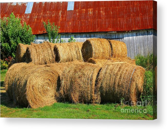 Harvest Acrylic Print featuring the photograph The Harvest by Sophie Vigneault