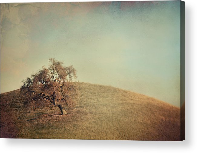 Landscape Acrylic Print featuring the photograph The Neverending Loneliness by Laurie Search