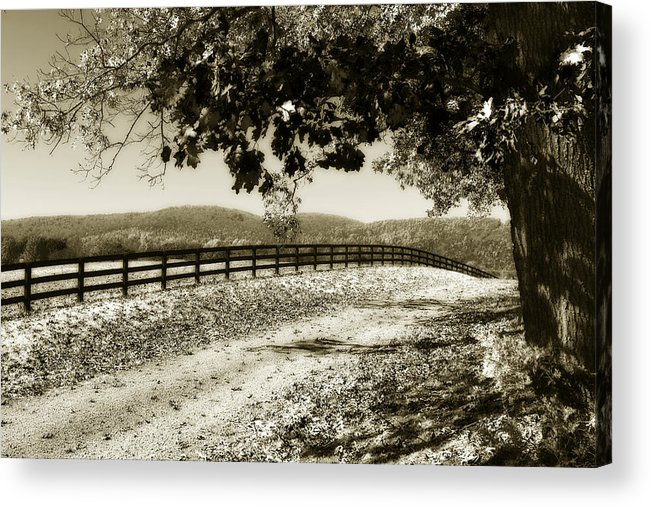Photo Acrylic Print featuring the photograph The Road Home -2 by Alan Hausenflock