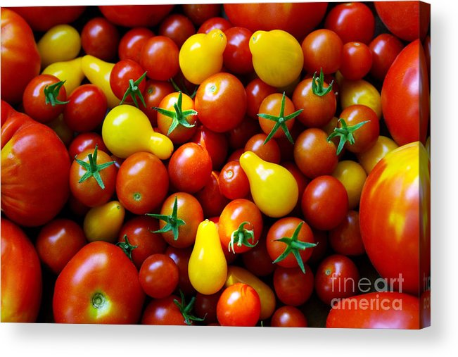 Abundance Acrylic Print featuring the photograph Tomatoes Background by Carlos Caetano