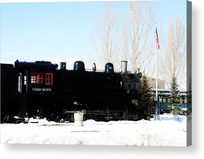 Train Acrylic Print featuring the photograph Train by Tesia Balls