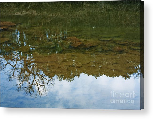 Reflection Acrylic Print featuring the photograph Underwater Landscape by Lisa Holmgreen