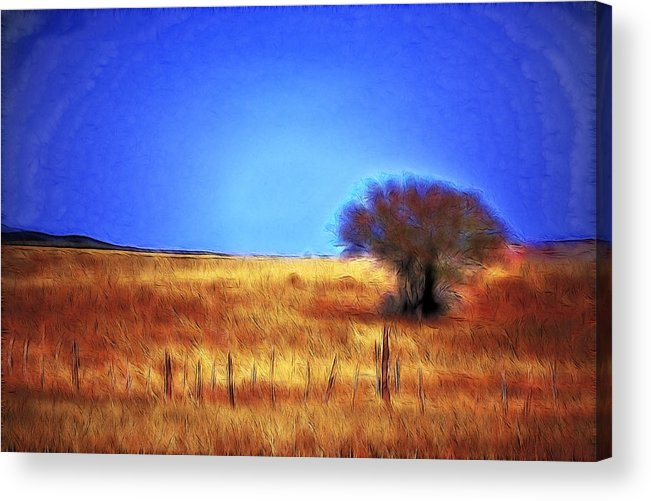 Fine Art Acrylic Print featuring the photograph Valley San Carlos Arizona by Donna Greene