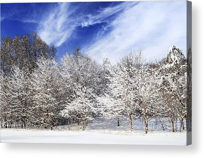 Winter Acrylic Print featuring the photograph Winter Forest Covered With Snow by Elena Elisseeva