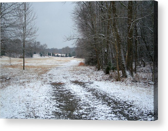Snow Acrylic Print featuring the photograph Winter Pasture by Cyndi Brewer