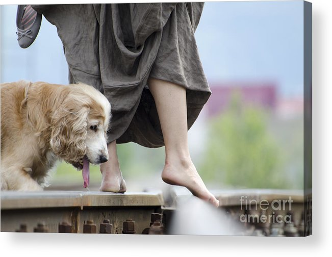 Shoes Acrylic Print featuring the photograph Woman With A Skirt And A Dog by Mats Silvan