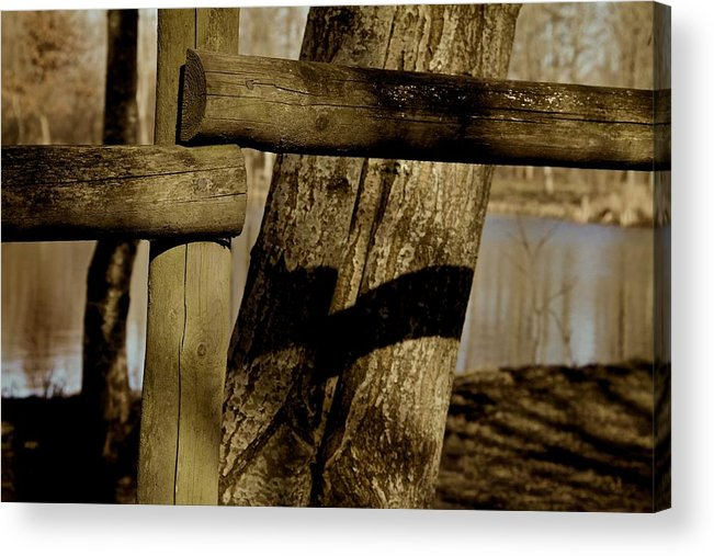 Wood Acrylic Print featuring the photograph Wood by Odd Jeppesen