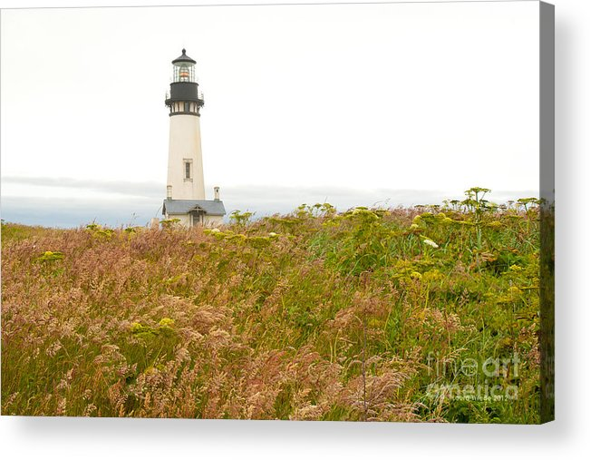 Yaquina Head Lighthouse In Oregon Acrylic Print featuring the photograph Yaquina Head Lighthouse In Oregon by Artist and Photographer Laura Wrede