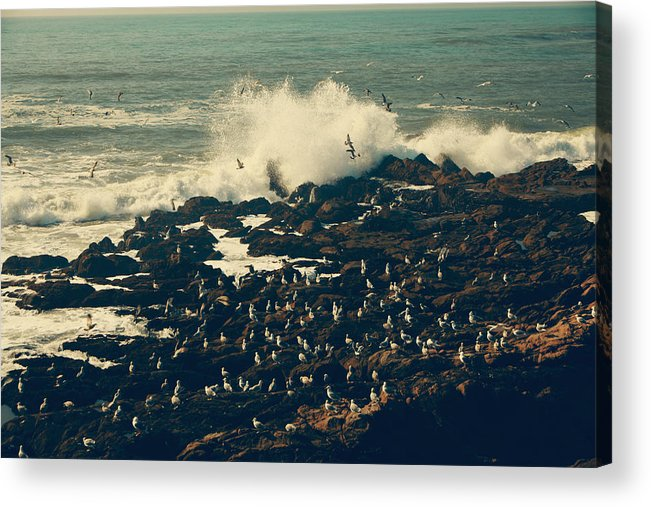 Cambria Acrylic Print featuring the photograph You Came Crashing Into My Heart by Laurie Search