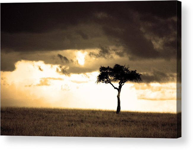 Nature Acrylic Print featuring the photograph 08006 by Jeffrey Freund