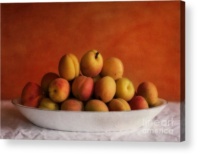 Apricot Acrylic Print featuring the photograph Apricot Delight by Priska Wettstein