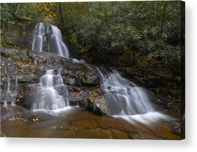Laurel Falls Acrylic Print featuring the photograph Autumn At Laurel Falls by Darrell Young