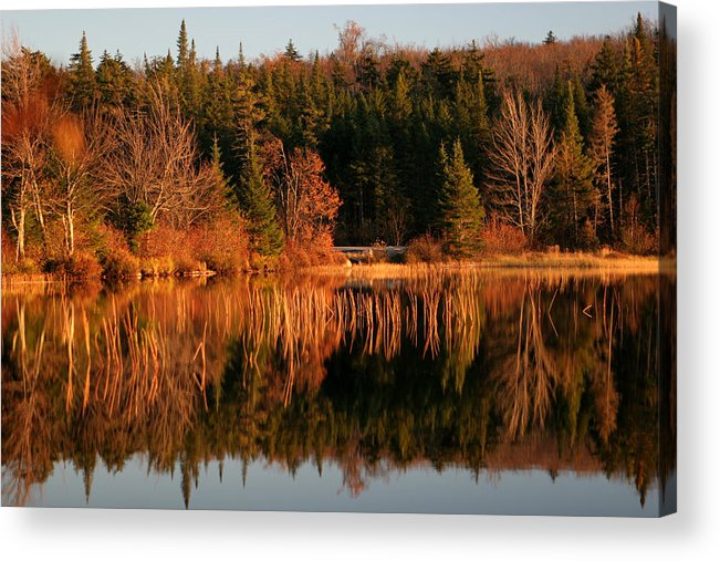 Adirondacks Acrylic Print featuring the photograph Autumn Lake by Kate Leikin