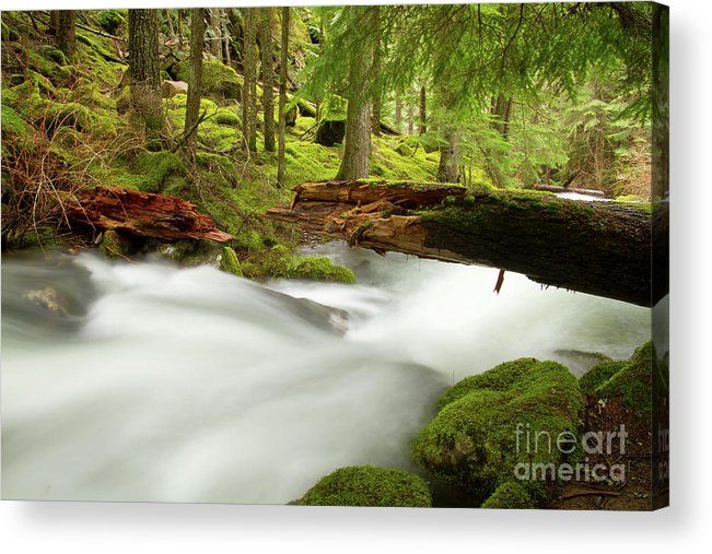 Beauty Creek Acrylic Print featuring the photograph Beauty Creek by Idaho Scenic Images Linda Lantzy