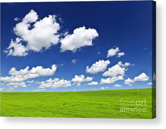 Field Acrylic Print featuring the photograph Green Rolling Hills Under Blue Sky by Elena Elisseeva