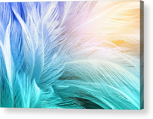 Green Turquoise And Blue Color Trends Chicken Feather Texture Backgroundlight Orange Acrylic Print