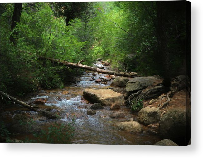 Into The Light Acrylic Print featuring the digital art Into The Light by Ernie Echols