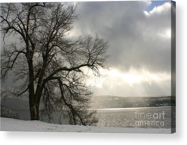 Lake Acrylic Print featuring the photograph Luminescence by Idaho Scenic Images Linda Lantzy