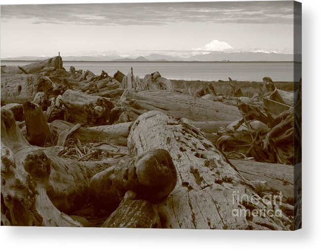 Landscape Acrylic Print featuring the photograph Mt Baker by Angela Q