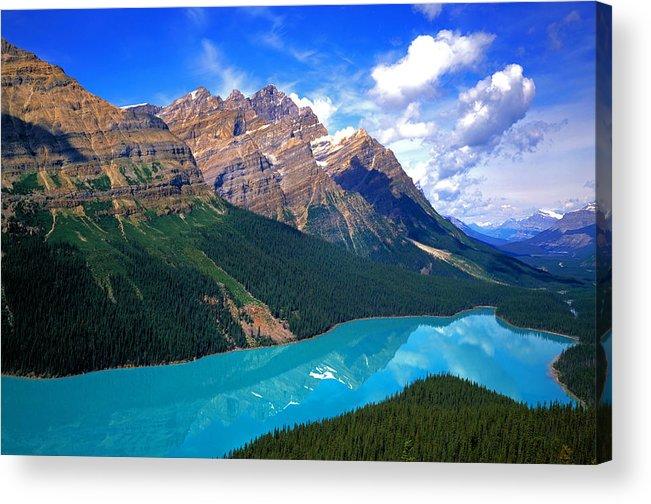 Peyto Acrylic Print featuring the photograph Peyto Lake, Banff National Park by Buddy Mays