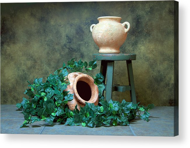 Ivy Acrylic Print featuring the photograph Pottery With Ivy I by Tom Mc Nemar