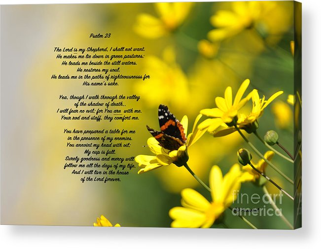 Comfort Acrylic Print featuring the photograph Psalm 23 by Debby Pueschel
