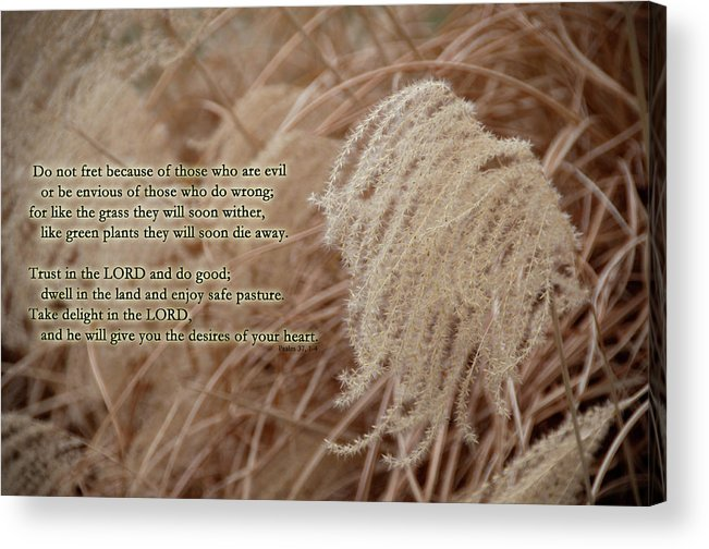 Psalm Acrylic Print featuring the photograph Psalm 37 by David Arment