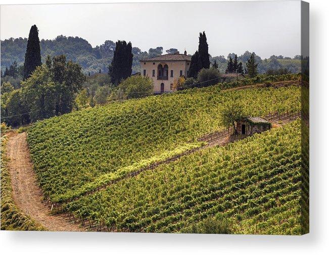 Montalcino Acrylic Print featuring the photograph Tuscany by Joana Kruse
