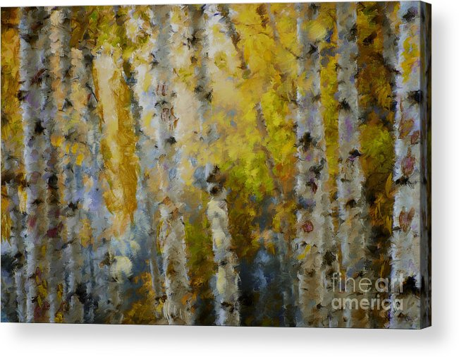 Aspens Acrylic Print featuring the mixed media Yellow Aspens by Marilyn Sholin