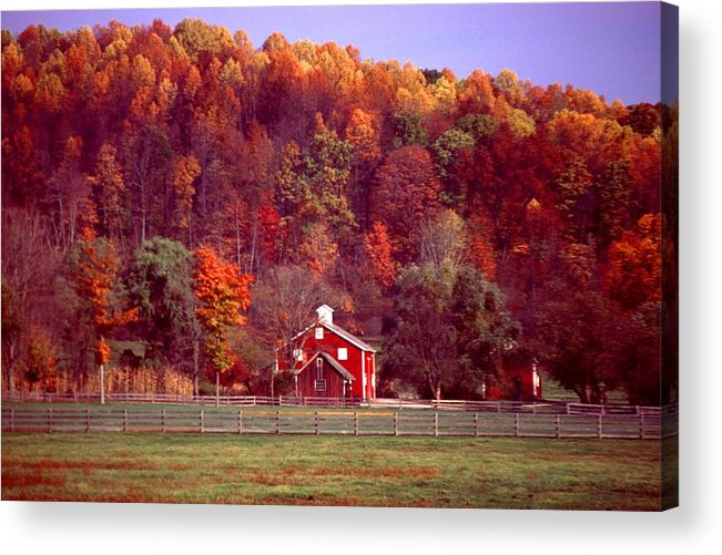 Autumn Acrylic Print featuring the photograph 102701-16 by Mike Davis