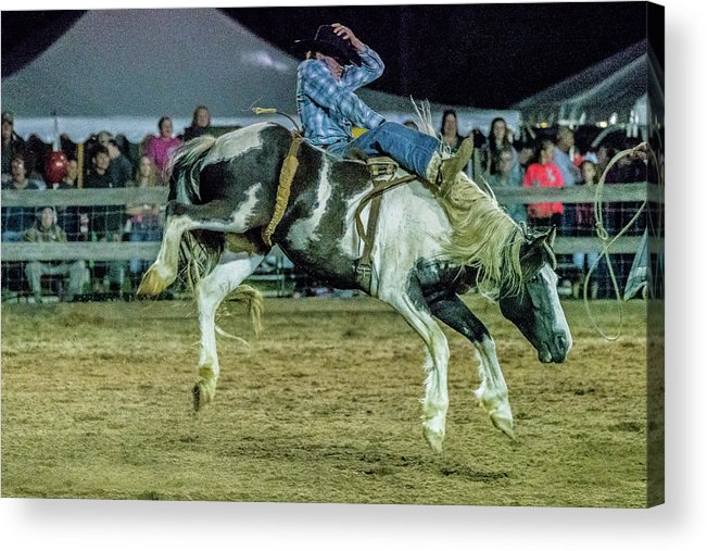 Rodeo Acrylic Print featuring the photograph Bronco Riding by Glenn Matthews