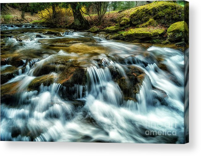 Anthony Creek Acrylic Print featuring the photograph Spring Along Anthony Creek by Thomas R Fletcher