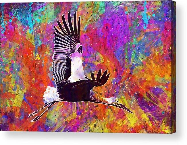 Stork Fly Elegant Feather Bird Acrylic Print by PixBreak Art