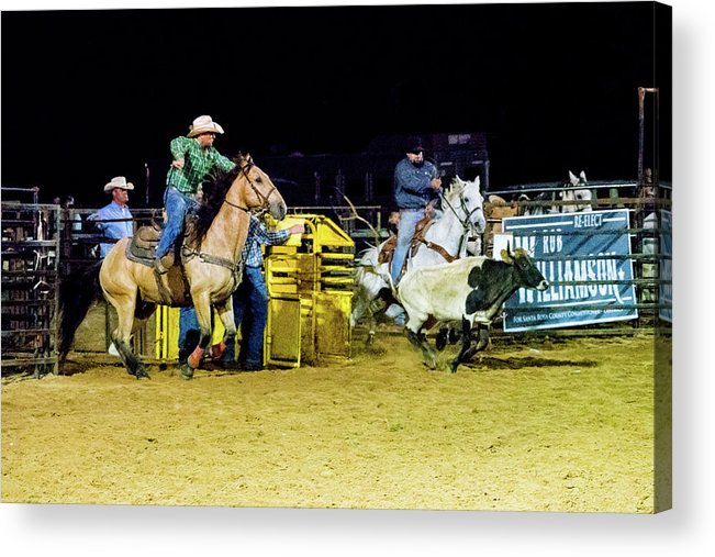 Horse Acrylic Print featuring the photograph Steer Roping by Glenn Matthews