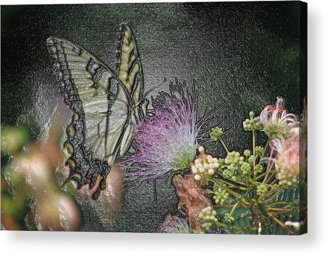 Air Acrylic Print featuring the photograph 5849 4 by Jim Simms