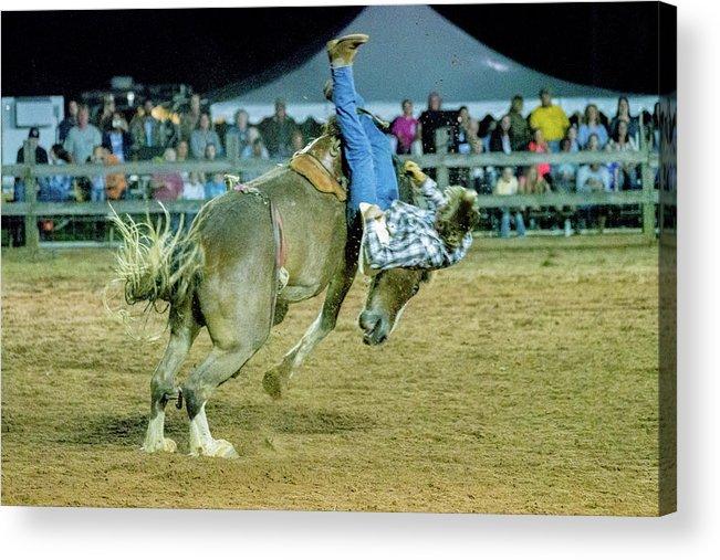 Rodeo Acrylic Print featuring the photograph Bronco Riding by Glenn Matthews