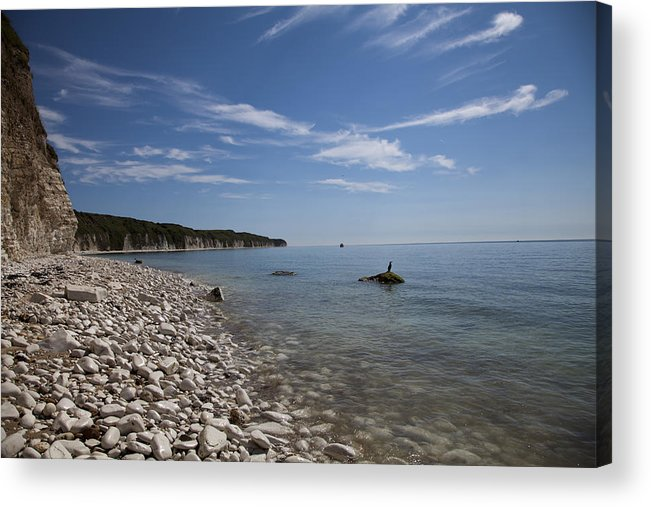 Flamborough Head North Yorkshire Uk Bridrington Acrylic Print featuring the photograph Flamborough Head by Stephen Almond