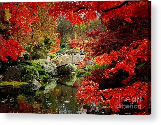Landscape Acrylic Print featuring the photograph A Most Beautiful Spot by Jon Holiday