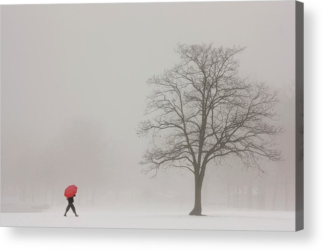 Snowy Winter Acrylic Print featuring the photograph A Shortcut Through The Snow by Tom York Images