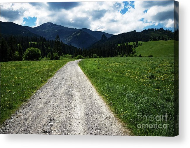 Blue Acrylic Print featuring the photograph A Stone Path Through The Countryside Into The Forest by Jozef Jankola