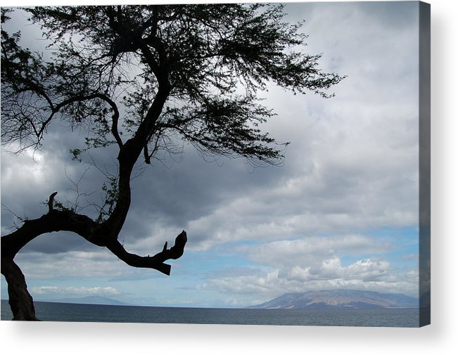 Hawaii Acrylic Print featuring the photograph A View From Maui by J D Banks
