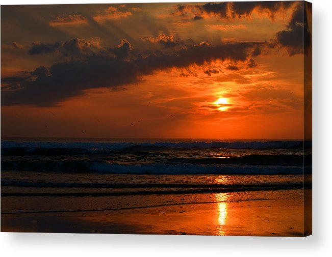Ocean Acrylic Print featuring the photograph Above And Below by Dianne Cowen