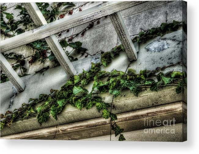 Above The Door Acrylic Print featuring the photograph Above The Door by Chris Fleming
