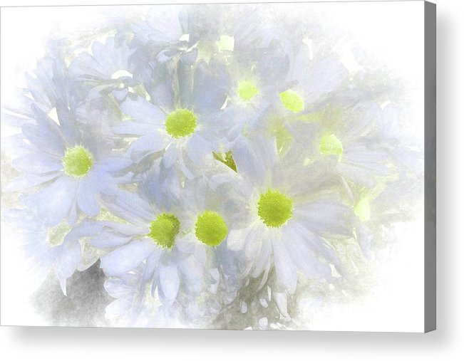 Abstract Acrylic Print featuring the photograph Abstract Daisy Boquet by Robert Kinser