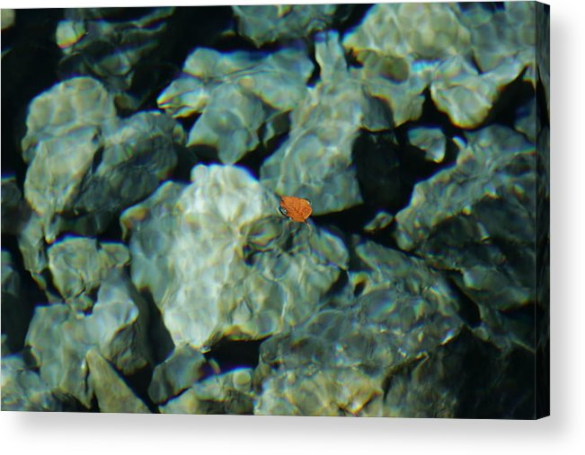 Abstract. Water Acrylic Print featuring the photograph Abstract Form Nature by Kam Chuen Dung
