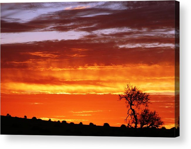 Sunset Acrylic Print featuring the photograph African Sunset by Linda Russell