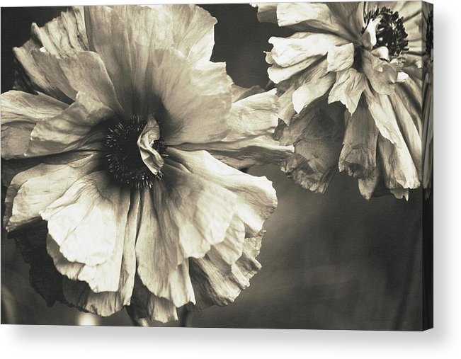 Acrylic Print featuring the photograph Age Of Change... by The Art Of Marilyn Ridoutt-Greene