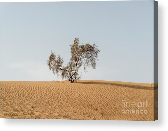 Sand Acrylic Print featuring the photograph Alone by Arik Baltinester