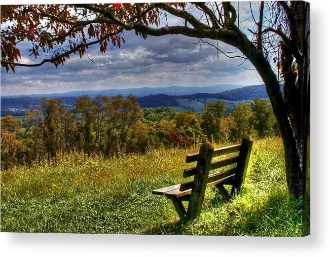 Nature Acrylic Print featuring the photograph Alone by Mitch Cat